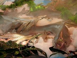 brumifrais-poissonnerie (3)