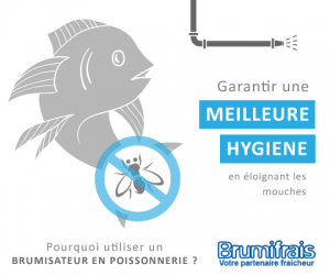 Pas de mouches pour plus d'hygiène  avec votre brumisateur poissonnerie
