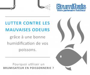 Prévenez le dessèchement naturel et les mauvaises odeurs avec un brumisateur poissonnerie BRUMIFRAIS !