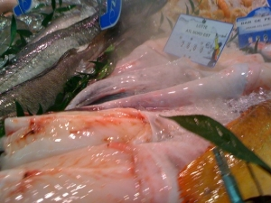 brumifrais-poissonnerie (7)