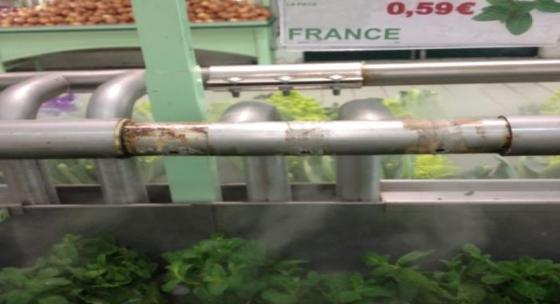 nébulisation fruits et légumes comparaison brumisation BRUMIFRAIS