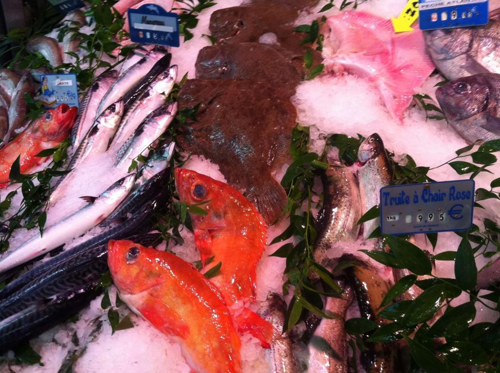 Aspect brillant et conservation du poisson grâce à l'utilisation du système BRUMIFRAIS.